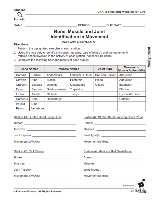 Physical Education Middle High School Portfolio – Personal Fitness Worksheet